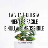 La vita è questa: niente è facile e nulla è impossibile - Giuseppe Donadei